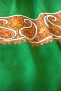 Chinon Sozan Work Saree-GREEN GOLD